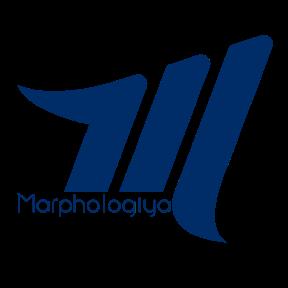 Marphologiya