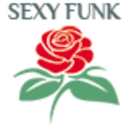 赌场怪盗 - Casino Robbery Funk