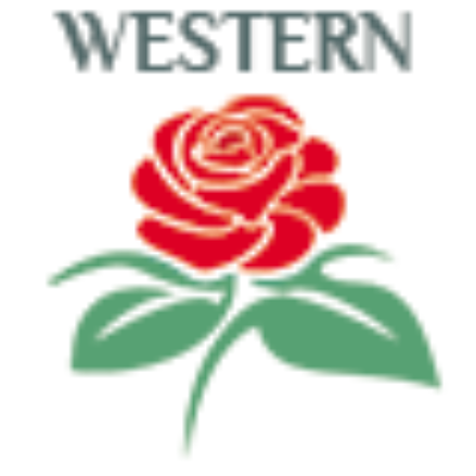 西部镖客 - Legendary Oldschool Western