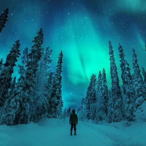 寒冬降至-The Longest Winter