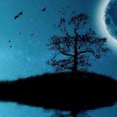 古月奇谭 - Lough Leane