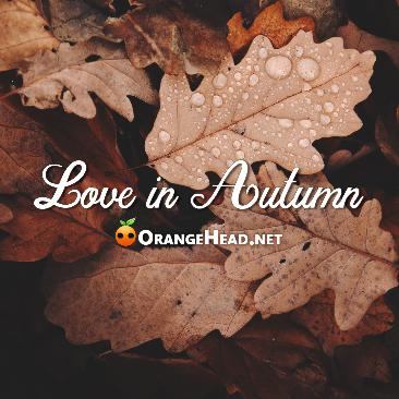 爱在秋天 - Love in Autumn